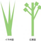 生産構造-生産構造図と層別刈取法-