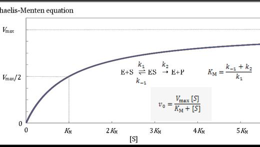 酵素の速度測定方法:カエリス・メンテンの式・ストップフロー装置