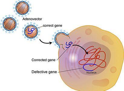 遺伝子治療
