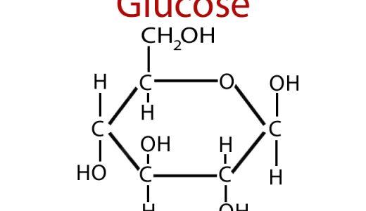 生体内の糖まとめ‐単糖・二糖・多糖類‐