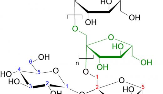 原尿量・流入血液量の計算-イヌリンとバラアミノ馬尿酸-