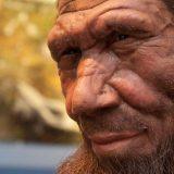 ネアンデルタール人の遺伝子がホモサピエンスに含まれているってどういう意味?