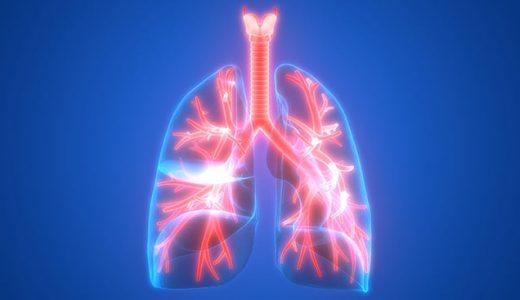 【閲覧注意】肺に息を吹き込んで膨らませとおもしろい