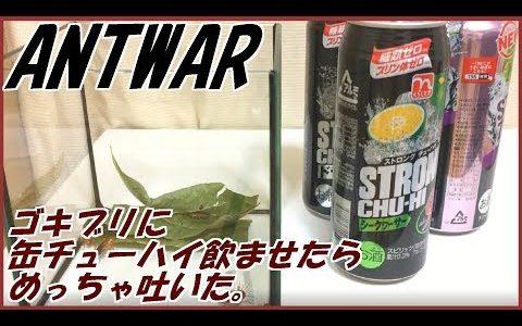 【閲覧注意】ゴキブリにアルコール濃度の高いチューハイを与えてみる実験が興味深い