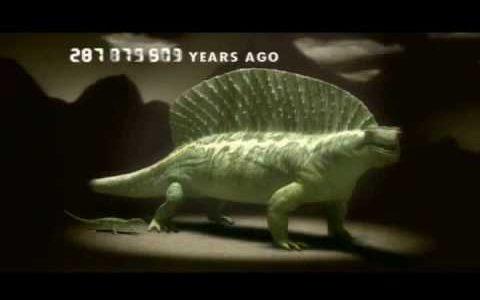 生物の進化の歴史を僅か5分にまとめた映像に進化の凄さを感じざるを得ない