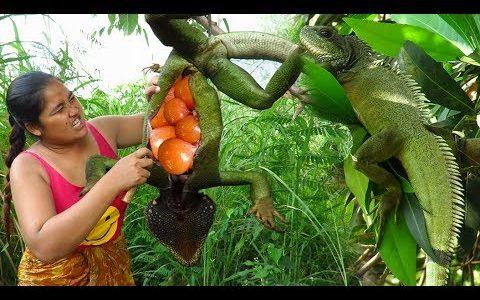 ある女性がグリーンイグアナをパチンコで射止め、「ホォホォ!!」と感極まりながら丸焼きにして食べる映像