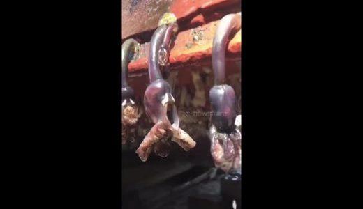 船底にびっしりとついた蔓脚類(フジツボの仲間)を除去していくだけの気持ちの良い映像