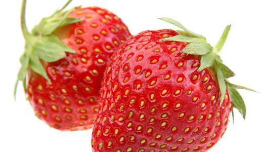【Q&A】イチゴの赤い部分は子房が発達したもの?果実はどこ?