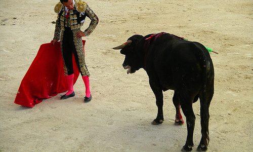 【Q&A】スペイン闘牛のウシはどうして赤いマントに興奮して突進するの?