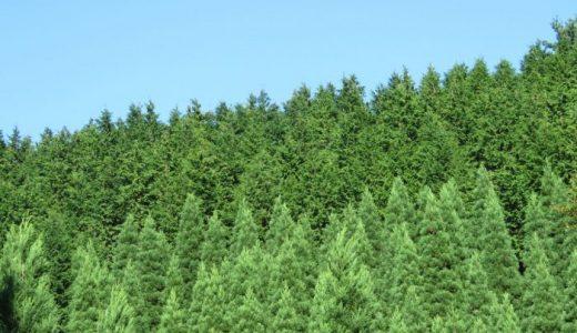 生態系保全-ラムサール条約・ワシントン条約・生物多様性条約-