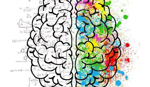 【厳選】知的刺激がすごすぎる!脳科学に関する面白いおすすめ本まとめ