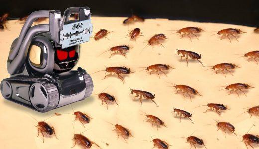 1000匹のゴキブリ相手にロボットが剃刀の刃を振り下ろしまくる狂気映像
