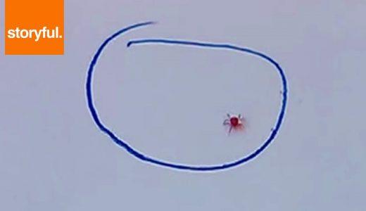 【実験】「Doodle」というペンを使って虫の進行を妨げる映像