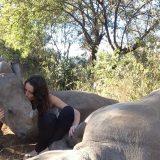 獰猛な大型動物と戯れる人間の映像にハラハラが止まらない【動画まとめ】