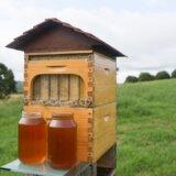 【養蜂】自動でハチミツを抜かれてしまうミツバチにとって地獄のような装置が開発されてしまう