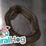 【動画】尻尾を餌だと勘違いして自分を食べてしまったヘビ、救出される