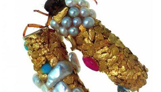 どんな材料からでも巣を作る習性で人間に遊ばれるヤツ「トビケラ」