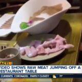 【動画】皿に盛られている生肉、皿から自力で逃げ出す