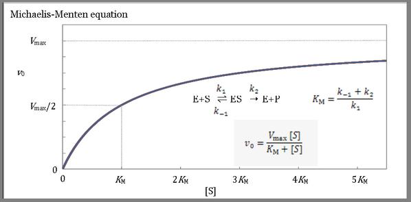 反応 速度 測定