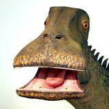 面白おっさんフェイス「二ジェールサウルス」