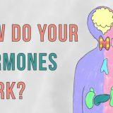 ホルモンの語源はギリシャ語で「呼び覚ます」の意味