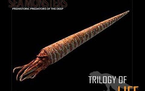 【絶滅種】超新星爆発によって絶滅した全長11mの巨大軟体動物「カメロケラス」