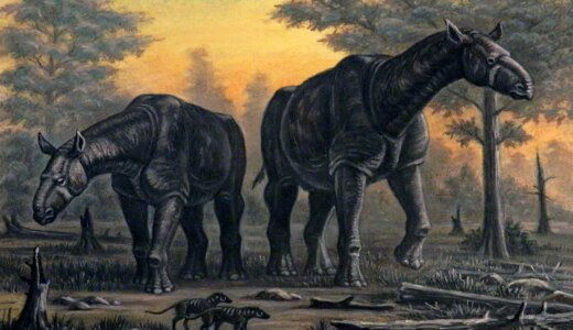 サイ属最大の巨体!!絶滅種「パラケラテリウム」