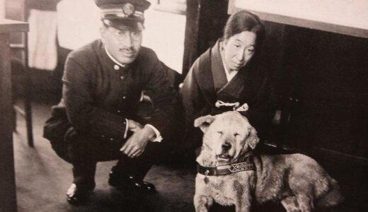 忠犬ハチ公が毎日渋谷駅に通ったのは焼き鳥のおこぼれをもらいにいくため?