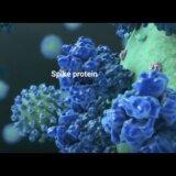 【動画】コロナウィルスのワクチンってどんな風に作用するの?その仕組みを綺麗な3D映像で解説してみた