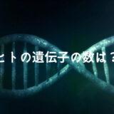 ヒトの遺伝子の数は2万1306個